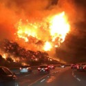 California Burning: What You Should Know About Homeowner's Insurance and Fire Claims