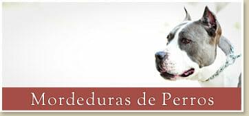 Abogados Expertos en Casos de Mordeduras de Perros