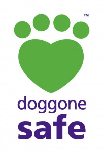 doggone safe logo