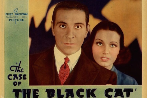 The Case of the Black Cat Perry Mason Movie Poster Graphic