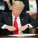 What Are Executive Orders Anyway?